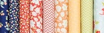 Coney Island by Fig Tree Quilts for Moda Fabrics
